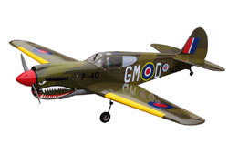 WORLD MODEL P-40 Warhawk (1450mm)