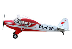 World Model 1/4 SUPER CUB  (2640mm)